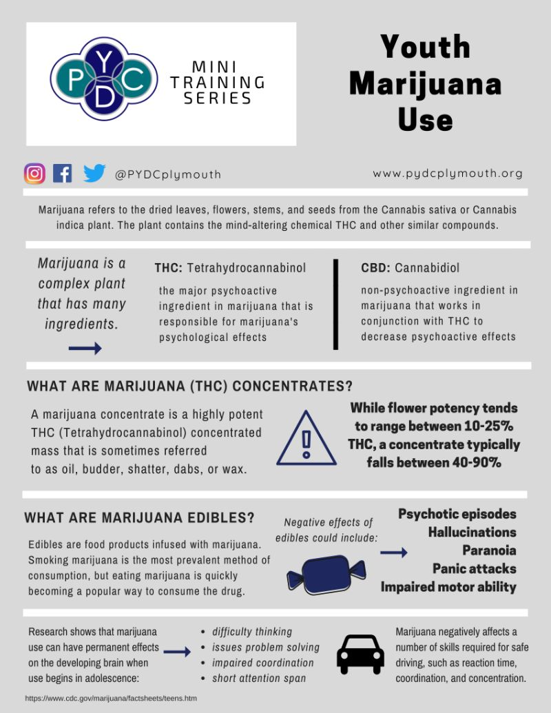 Cannabis Mini Training